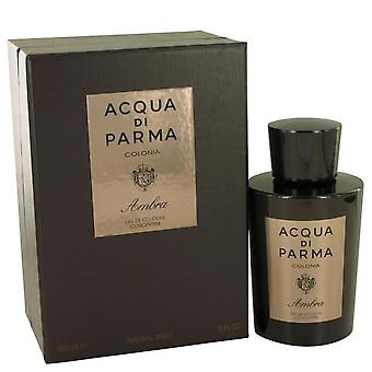 Acqua Di Parma Colonia Ambra Eau De Cologne Concentrate Spray By Acqua Di Parma 6 oz Eau De Cologne Concentrate Spray