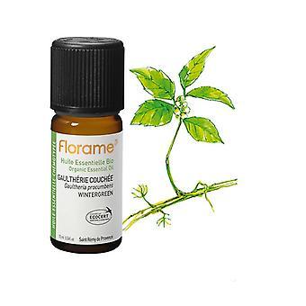 Biologisch gecoate wintergroene etherische olie 10 ml etherische olie