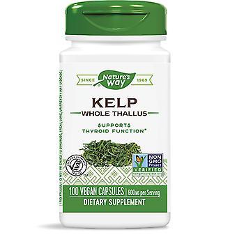 Nature's Way Kelp Vegan Capsules