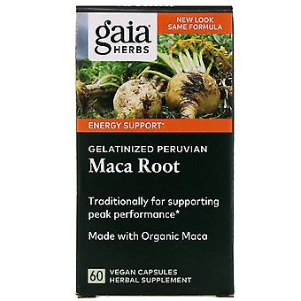 Gaia Herbs, Racine de Maca péruvienne gélatineux, 60 capsules végétaliennes