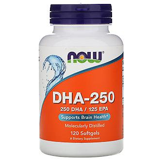Now Foods, DHA-250, 120 Softgels