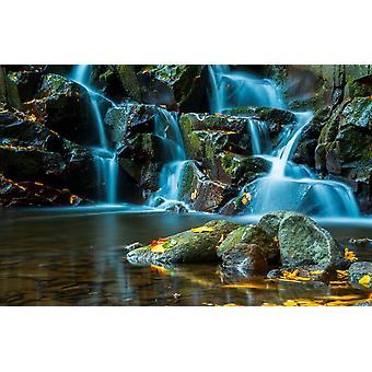 Mural de pared que fluye arroyo y cascada en el bosque