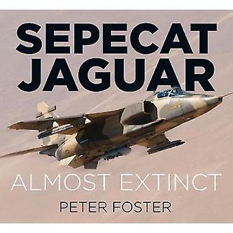 Sepecat Jaguar