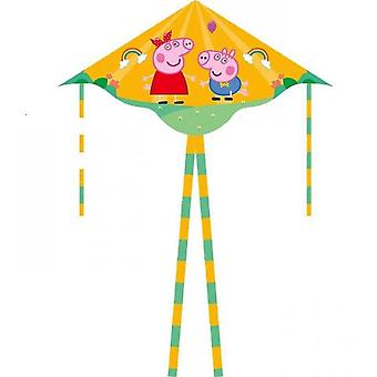Kinderen Cartoon Long-tailed Double-tailed Kite