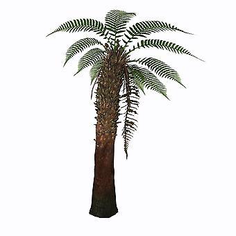 Dicksonia Etelämantereen tree saniainen Juliste Tulosta Corey FordStocktrek kuvia