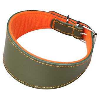 Greyhound Арппе ошейник кожа Superfelt зеленый / оранжевый