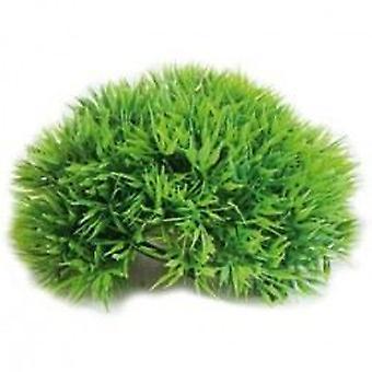 Sydeco Marine Moss (Fish , Decoration , Artificitial Plants)