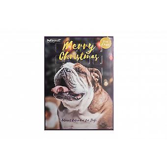 Pet Brands Carob-filled Dog Advent Calendar