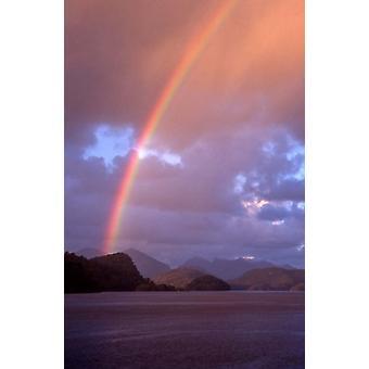 New Zealand Cascade Cove Fiordland NP Rainbow Poster Print by David Wall