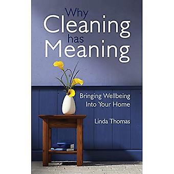 Waarom schoonmaken heeft betekenis: Welzijn brengen in uw huis