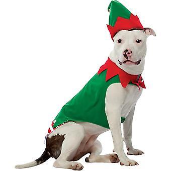 Elf Pet costum
