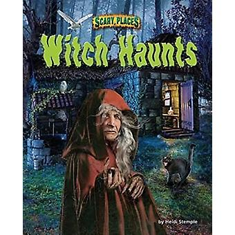 Witch Haunts by Heidi E Y Stemple - 9781944102395 Book