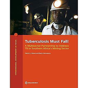 Tuberkuloosin on kuuluttava!: moniector-kumppanuus, jolla puututaan tuberkuloosiin Etelä-Afrikassa ' s-kaivos sektorilla (keskitytään kansainväliseen kehitykseen)