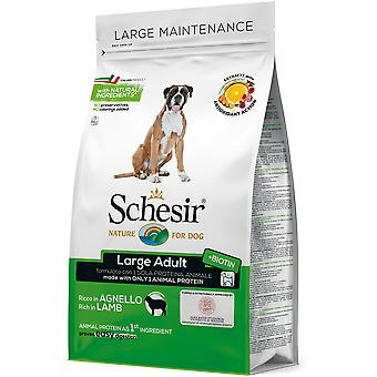 Schesir Large Breed Pollo (Dogs , Dog Food , Dry Food)