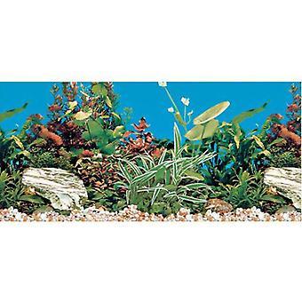 Trixie Aquarium Rückwand 60x30 cm. (Fische , Aquariumsdeko , Poster)