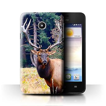 STUFF4 Case/Cover for Huawei Ascend Y330/Elk/Bull/North America Animals