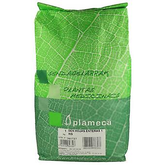 Plameca Sen Crushed Sheets (Food, Beverages & Tobacco , Beverages , Tea & Infusions)