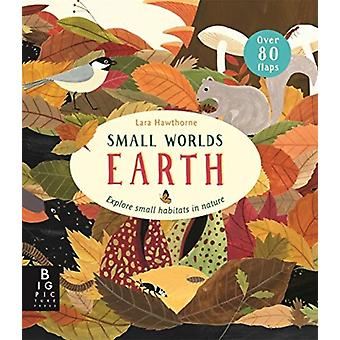 Small Worlds Earth by Camilla de La Bedoyere & Illustrated by Lara Hawthorne