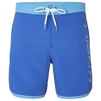 O'Neill Frame Logo Shorts - Dazzling Blue