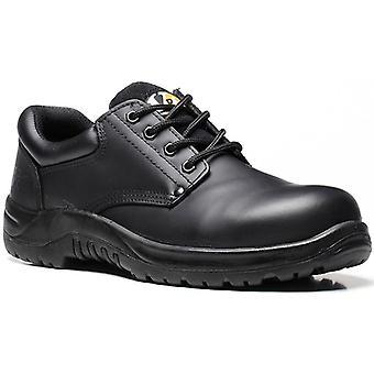 V12 VR608 Tiger Black Derby Shoe EN20345:2011-S3 Size 9