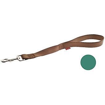 Ferribiella Nylon strap handle Special Green