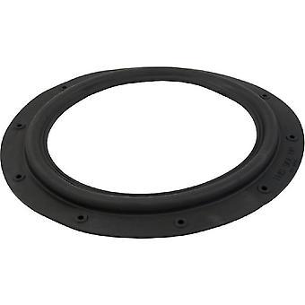 海沃德 ECX1039 Perflex EC30 隔膜垫片
