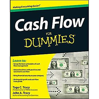 Cash Flow für Dummies