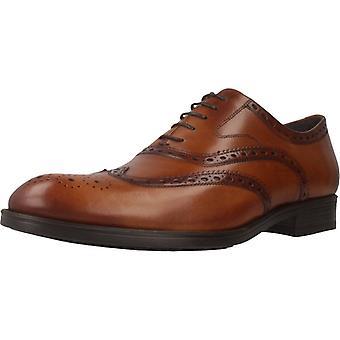 Chaussures de robe Sergio Serrano 5003 50 Cuir couleur