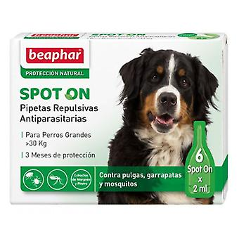 Beaphar Antiparasitic Pippetes Large Breed