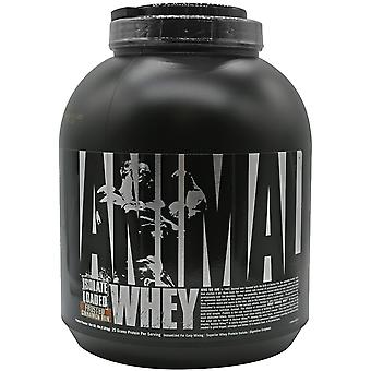 Universal Nutrition Animal Whey - 54 Servings - Frosted Cinnamon Bun