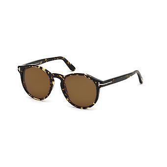 Tom Ford Ian-02 TF591 52M Dark Havana/Polarised Roviex Sunglasses