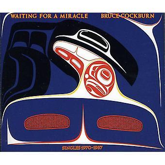 Bruce Cockburn - attente d'un Miracle [CD] USA import