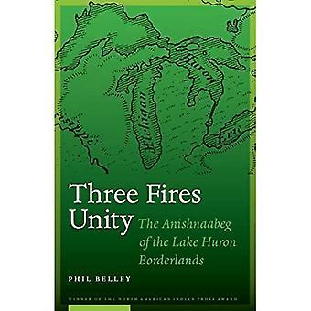 Three Fires Unity: The Anishnaabeg of the Lake Huron Borderlands (North American Indian Prose Award)