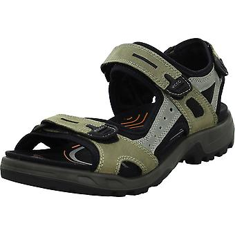 Ecco Offroad 06956451693 universal summer men shoes