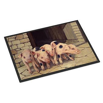 الخنازير الخنازير دافني باكستر الأماكن المغلقة أو في الهواء الطلق حصيرة 24 × 36