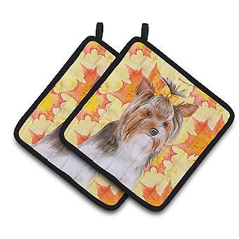 Carolines Treasures  BB9984PTHD Yorkshire Terrier #2 Fall Pair of Pot Holders