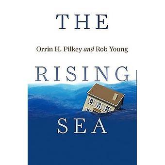 Das steigende Meer von Orrin H. Pilkey - Rob Young - 9781597261913 Buch