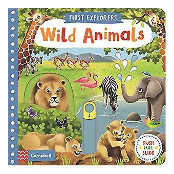 Animali selvatici - primi esploratori (scheda libro)
