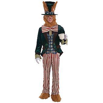 Maaliskuuta jänis kani Alice In Wonderland pääsiäinen pupu tarina kirja viikko miesten puku