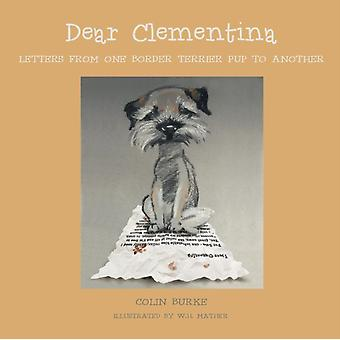 Dear Clementina by Burke & Colin