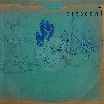 Crescent - Resin Pockets [Vinyl] USA import