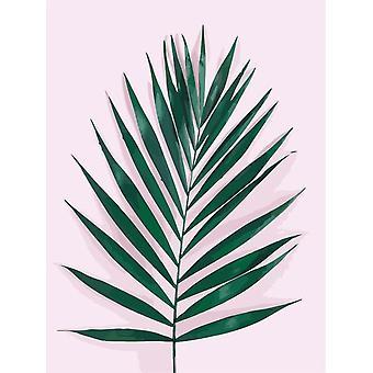 زيت اللوحة من قبل أرقام أوراق مجموعات النبات رسم قماش