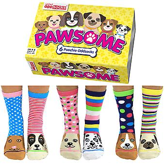 United Oddsocks Women's Pawsome Socks Gift Set