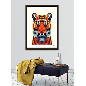 Tiger - Colorful Animals  Frame