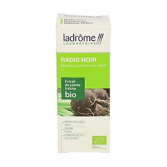 Organic Black Radish Extract 50 ml
