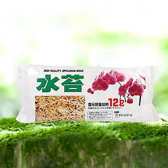 Moss Garden Moisturizing Nutrition Organic Fertilizer For Phalaenopsis Orchid