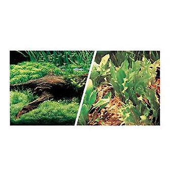 Marina MARINA - Amplas plantas / PLANTAS (Peixe , Decoração , Fundos)