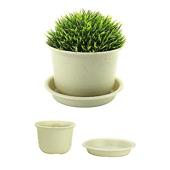 Set of 10 Plastic Bonsai & Flower Plant Pots for Indoor and Outdoor Garden Use | Pukkr Large