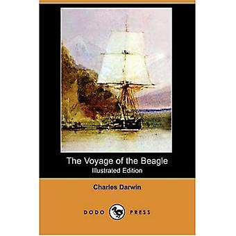 The Voyage of the Beagle (Illustrated Edition) (Dodo Press)