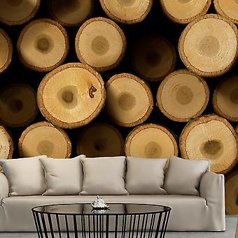 Papel pintado efecto madera - Junto a la chimenea